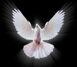Křest v Duchu